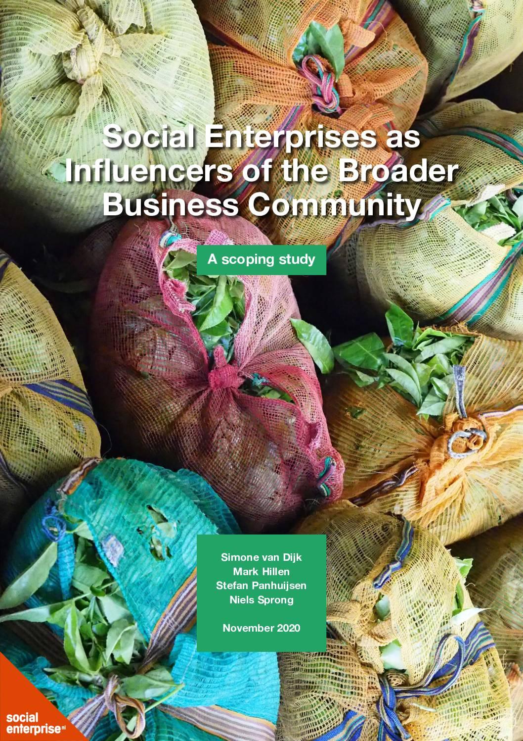 Social Enterprises as Influencers of the Broader Business Community