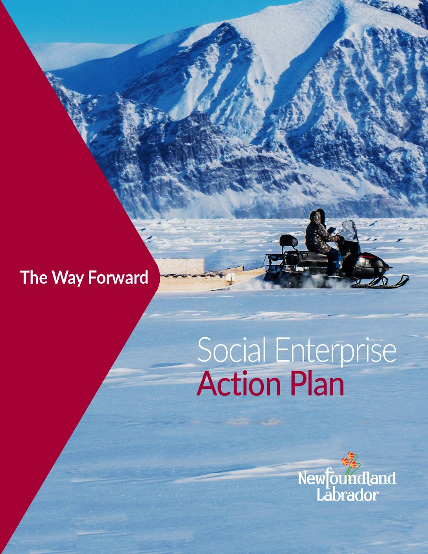 Newfoundland and Labrador Social Enterprise Strategy